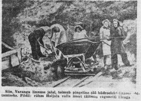 Foto: I. Reidi, 7.08.1947, Noorte Hääl.