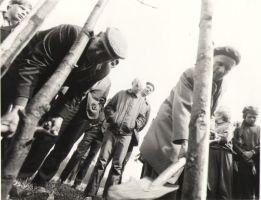 Paul Rummo ja Osvald Tooming looduskaitsepäeval puud istutamas. Jõepere, 1972., DrKM F 256:6, Dr. Fr.R. Kreutzwaldi Memoriaalmuuseum, http://www.muis.ee/museaalview/976619.
