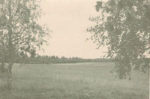 Vaade mälestusmärgi ümbrusele, 1966. DrKM F 213:5, Dr.Fr.R.Kreutzwaldi Memoriaalmuuseum, http://www.muis.ee/museaalview/972989.