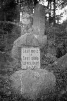 Vabadussõja mälestussammas, ERM Fk 2813:132, Eesti Rahva Muuseum, http://www.muis.ee/portaal/museaalview/542579.