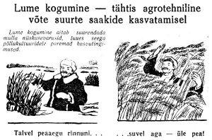 Lume kogumine, Punane Täht, 23.02.1952.