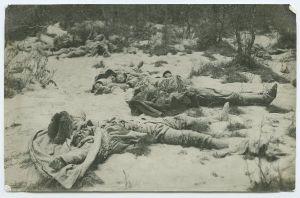 Foto: Parikas, Johannes ja Peeter. Hukkunute surnukehad Rakvere lähedal Palermos., TLM F 9870:73, Tallinna Linnamuuseum, http://www.muis.ee/portaal/museaalview/1416623.