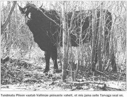 Virumaa Teataja, 18.05.2002