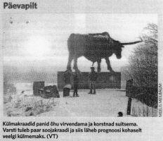Virumaa Teataja, 6.02.2015.