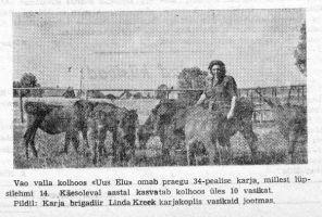 """Viru Sõna"" 12.08.1948."