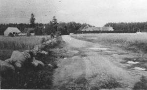Tee Männisalus. Vasakul Aalbergi (Väljaotsa) ja paremal Tammaru (Nõmme) talu. Erakogu.