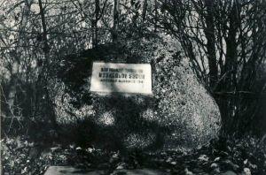 Vilgu, mälestuskivi nõukogude võimu eest langenutele, 1980. aastad. RM F 1329:22, SA Virumaa Muuseumid, http://www.muis.ee/museaalview/1421222.