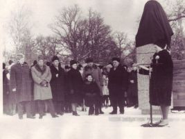E. Vilde monumendi avamine, TALK EVMF 589:4 EVMF 589, Tallinna Kirjanduskeskus, http://www.muis.ee/museaalview/2263257.