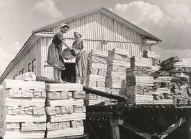 Tudu metsapunkti tsehhi töölised, RM F 333:2, SA Virumaa Muuseumid, http://www.muis.ee/museaalview/1870111.