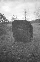 1998, EVM N 384:249, Eesti Vabaõhumuuseum EVM, http://www.muis.ee/museaalview/2173504.